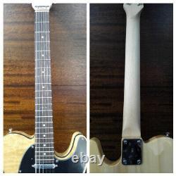 4/4 Haze HSTL 19100BNA 12SB 12-String Electric Guitar, S-S, Ash Burl Top+Free Bag
