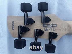 Ibanez Gary Willis 5 String Bass