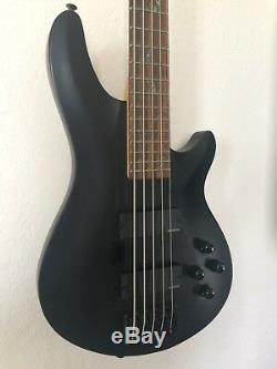 Schecter Damien Diamond Series 5 String Bass Guitar (flat black, bat inlays)