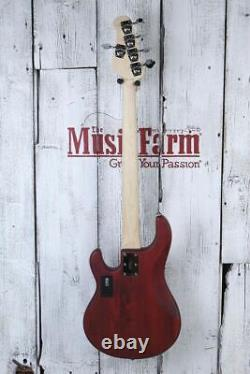 Sterling by Music Man StingRay 5 String Electric Bass Guitar Walnut Satin DEMO